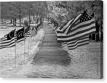 Old Glory Ir Canvas Print by Andy Lawless