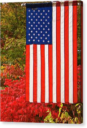Old Glory Canvas Print by Ron Roberts