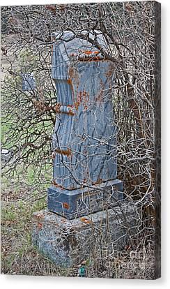 Old Gravestone In Pioneer Graveyard Overgrowth Canvas Print