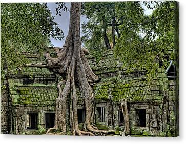 Old Growth Temple Canvas Print by James Wheeler