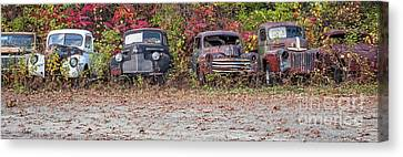 Old Guys Rule Panoramic Canvas Print by Edward Fielding