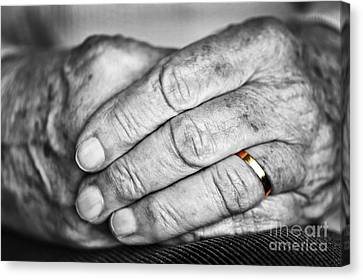 Old Hands With Wedding Band Canvas Print by Elena Elisseeva