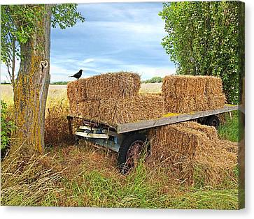 Old Hay Wagon Canvas Print