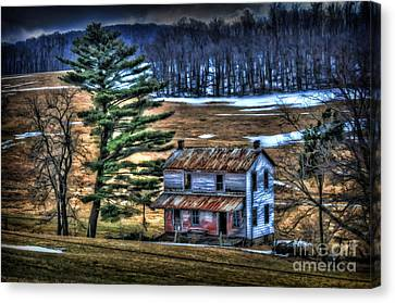 Old Home Place Beside Pine Tree Canvas Print by Dan Friend