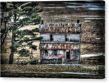 Old Home Place With Birds In Front Yard Canvas Print by Dan Friend