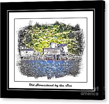 Old Homestead By The Sea Canvas Print by Barbara Griffin
