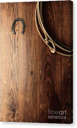 Old Horseshoe And Lariat Canvas Print