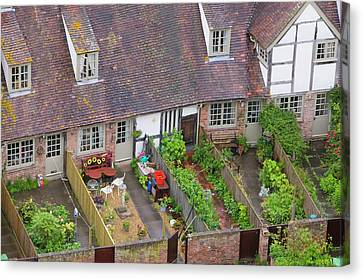 Old Houses And Back Gardens Canvas Print by Ashley Cooper