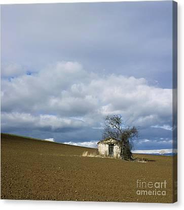 Old Hut. Auvergne. France Canvas Print by Bernard Jaubert
