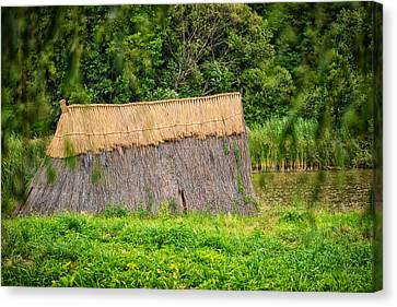 Bamboo House Canvas Print - Old Hut by Dobromir Dobrinov