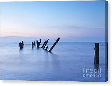 Old Jetty Posts At Sunrise Canvas Print by Colin and Linda McKie