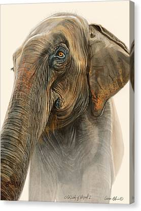 Old Lady Of Nepal 2 Canvas Print