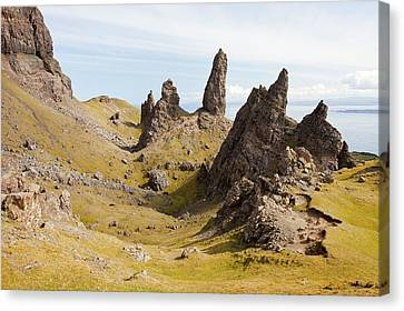 Old Man Of Storr Canvas Print by Ashley Cooper