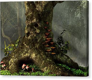 Old Man Of The Forest Canvas Print by Daniel Eskridge