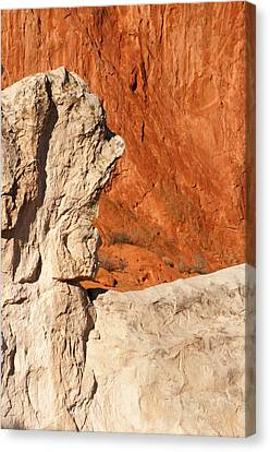 Old Man Of The Park Canvas Print