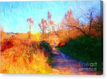 Old Man On Path Canvas Print by Gerhardt Isringhaus