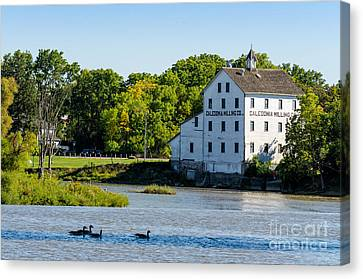 Old Mill On Grand River In Caledonia In Ontario Canvas Print