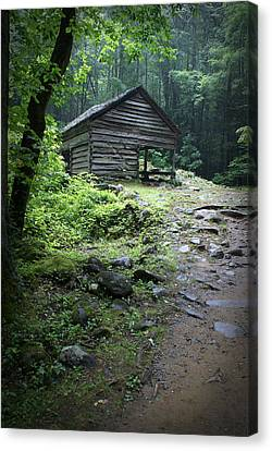 Old Mountain Cabin Canvas Print by Larry Bohlin