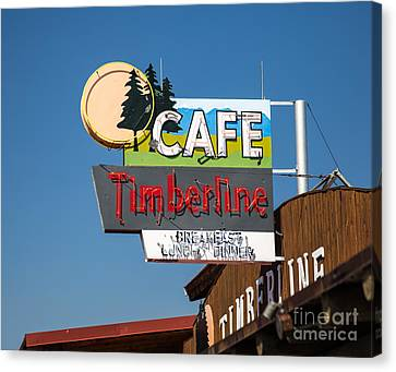 Old Neon Sign In West Yellowstone Canvas Print by Edward Fielding