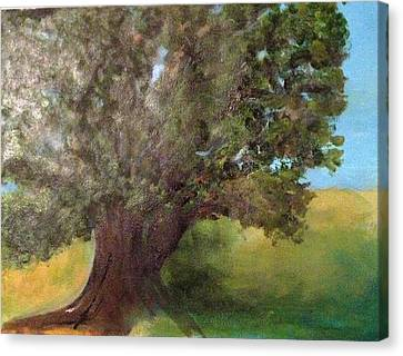 Old Oak Canvas Print by Andrea Friedell
