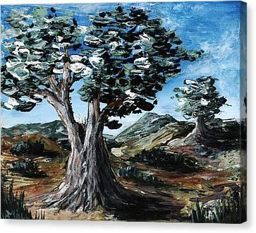 Old Olive Tree Canvas Print by Anastasiya Malakhova
