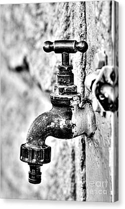 Old Outdoor Tap - Black And White Canvas Print by Kaye Menner