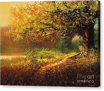 Old Path Canvas Print by Robert Foster