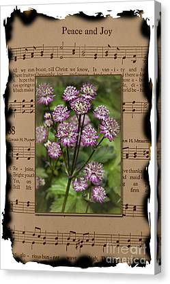 Old Peace And Joy Hymn With Burned Edges Star Of Beauty Flowers Canvas Print