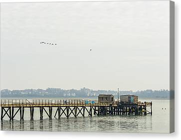 Old Pier Canvas Print by Svetlana Sewell