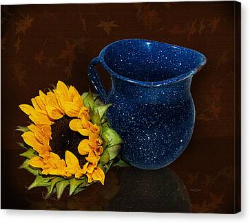 Old Pitcher Canvas Print