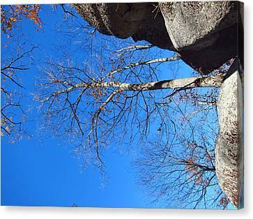 Old Rag Hiking Trail - 121211 Canvas Print