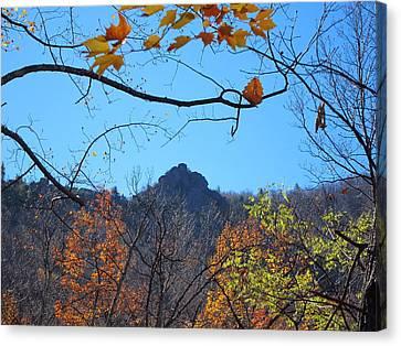 Old Rag Hiking Trail - 121213 Canvas Print