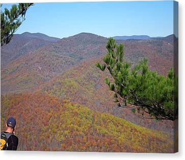 Old Rag Hiking Trail - 121222 Canvas Print