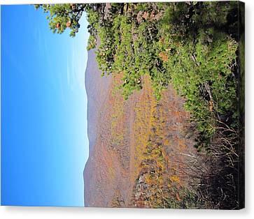 Old Rag Hiking Trail - 121224 Canvas Print