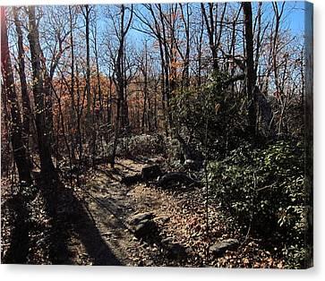 Old Rag Hiking Trail - 121248 Canvas Print