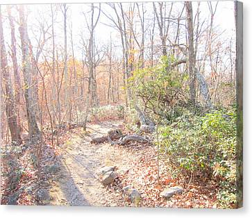 Old Rag Hiking Trail - 121249 Canvas Print by DC Photographer