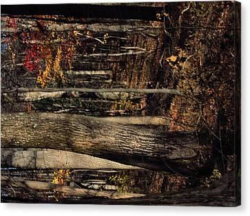 Old Rag Hiking Trail - 121251 Canvas Print
