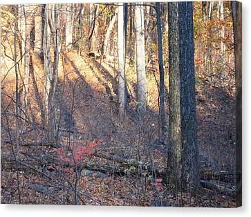 Old Rag Hiking Trail - 121263 Canvas Print