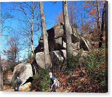 Old Rag Hiking Trail - 12129 Canvas Print