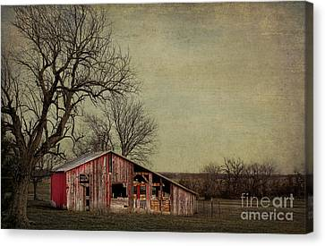 Old Red Barn Canvas Print by Elena Nosyreva