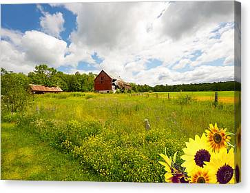 Old Red Barn. Canvas Print by Kelly Nelson