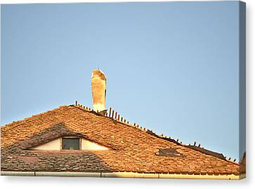 Old Roof With  A Chimney And A Triangular Attic Window Canvas Print by Ion vincent DAnu
