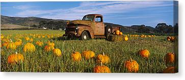 Old Rusty Truck In Pumpkin Patch, Half Canvas Print by Panoramic Images