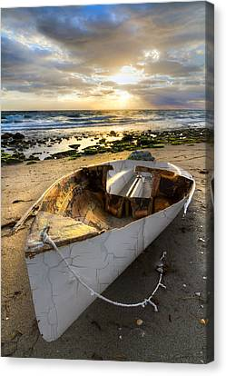 Old Salty Canvas Print by Debra and Dave Vanderlaan
