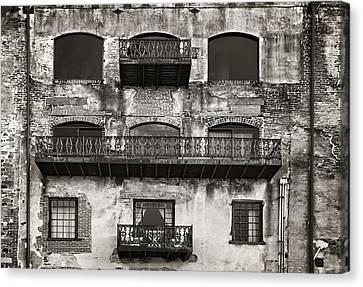 Canvas Print - Old Savannah by Mario Celzner