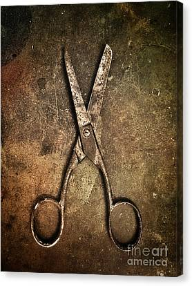 Ironwork Canvas Print - Old Scissors by Carlos Caetano