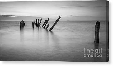 Old Sea Defences Spurn Point Canvas Print by Colin and Linda McKie
