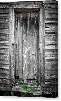 Old Shed Door Canvas Print by Marion Johnson