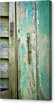 Old Shed Door Canvas Print by Tom Gowanlock