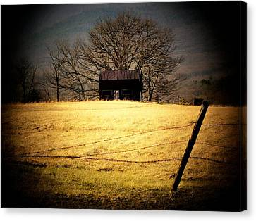 Old Shed Canvas Print by Michael L Kimble
